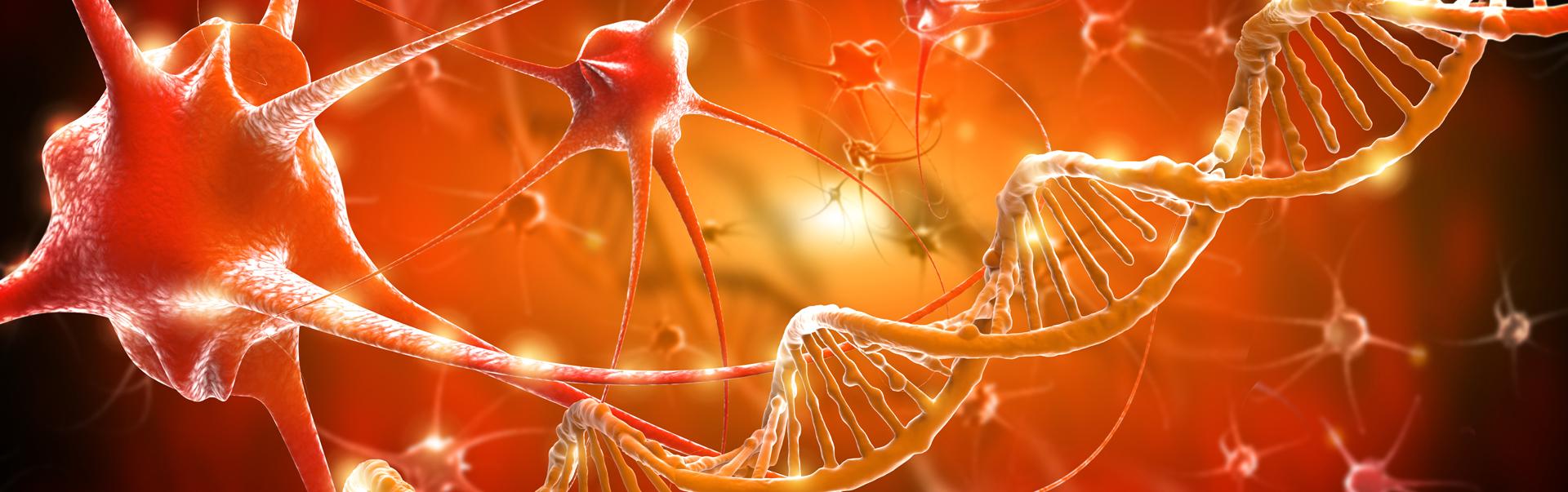 Noi subtipuri de Scleroză Multiplă identificate cu ajutorul inteligenței artificiale (AI)