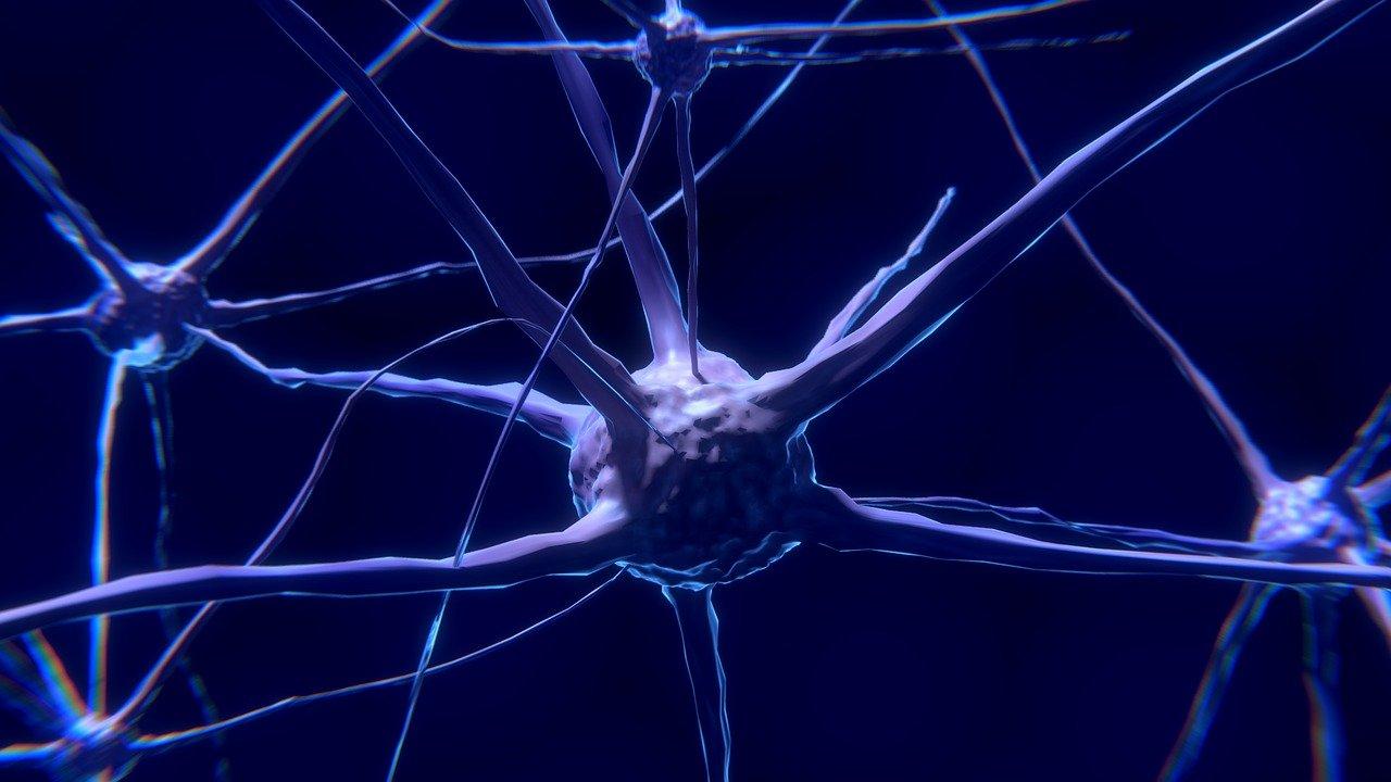 Noutăți privind scleroza laterală amiotrofică
