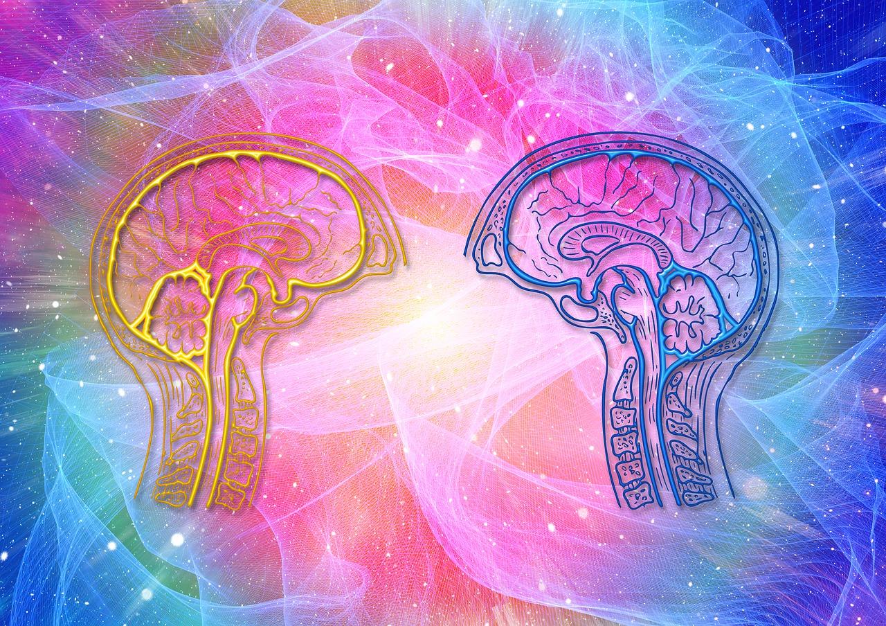 Cunoașterea socială, rol cheie în viața persoanelor cu scleroză multiplă